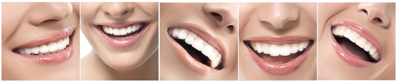Thankyou-Dental